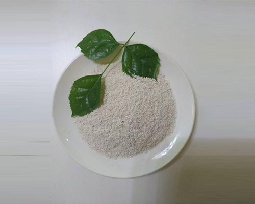 福建牡蛎粉