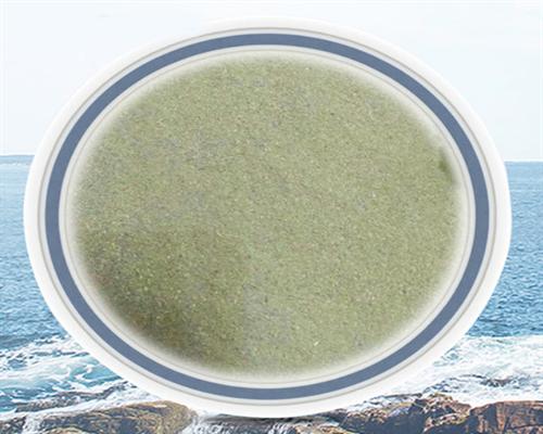 江西石莼粉