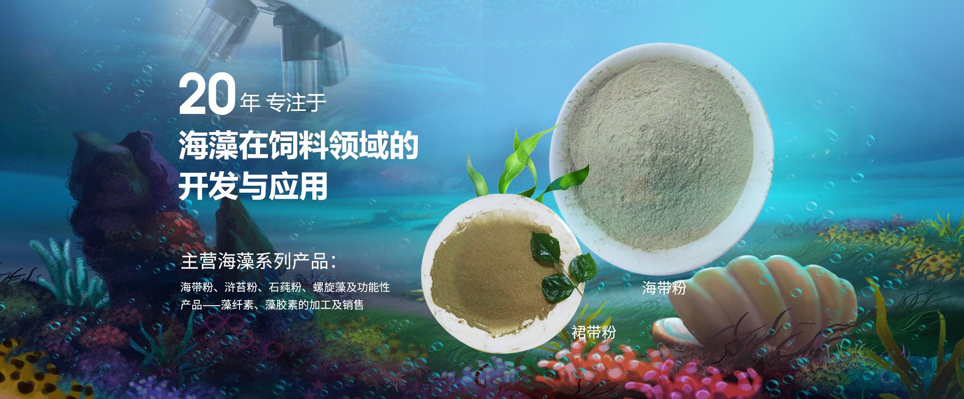 海藻粉厂家